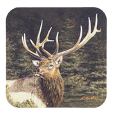 Legacy Publishing Group, Elk In Nature Coaster, 3 3/4 inches