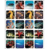 Eureka, Saltwater Life (photo) Stickers, 1 x 1 Inch, Multi-Colored, Pack of 120