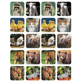 Eureka, Baby Animals (photo) Stickers, 1 x 1 Inches, Multi-Colored, Pack of 120