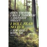 Salt & Light, Psalm 23:4 Fear No Evil Church Bulletins, 8 1/2 x 11 inches Flat, 100 Count