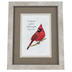 Carson Home Accents, Cardinals Appear When Angels Are Near Framed Artwork, PVC, 8 x 10 inches