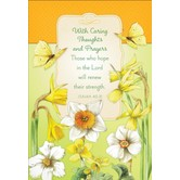DaySpring, Nature's Blessing Get Well Cards, by Marjolein Bastin, 12 count