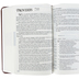 NASB New Inductive Study Bible, Imitation Leather, Brown